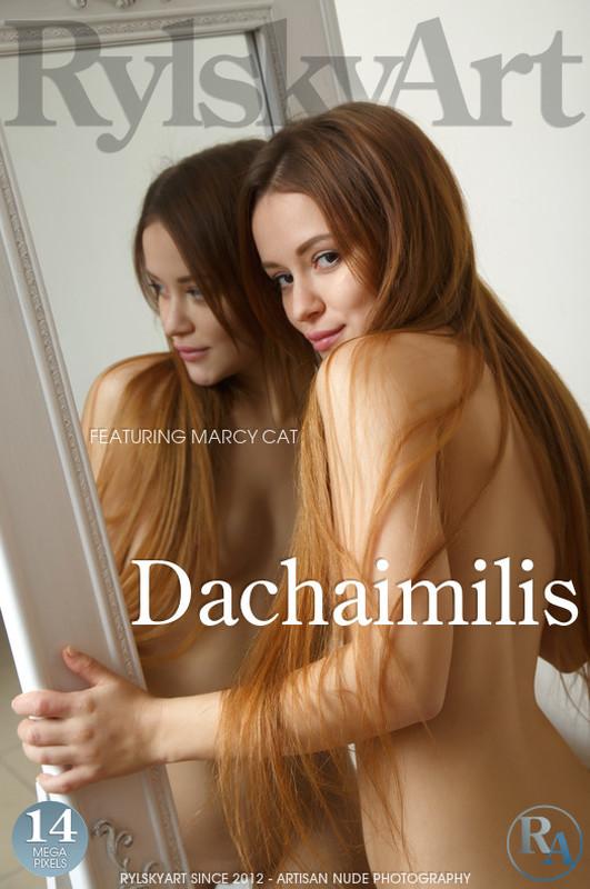 Marcy Cat - Dachaimilis (2020-04-29)