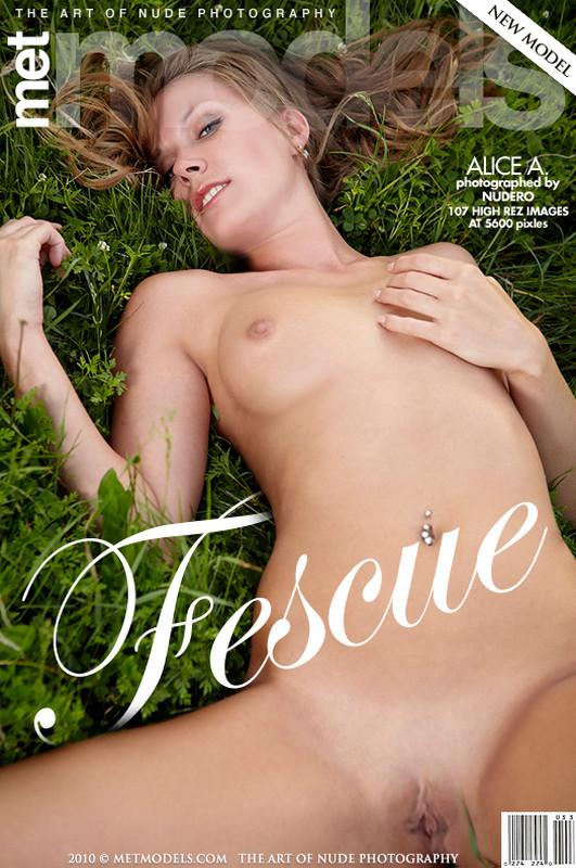 Alice A - Fescue (x106)