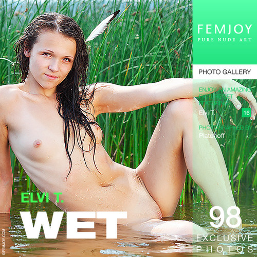 Elvi T - Wet (x98)