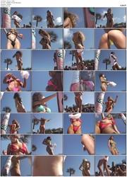 Bikini Crazy Contests - Florida Contest DVD 3