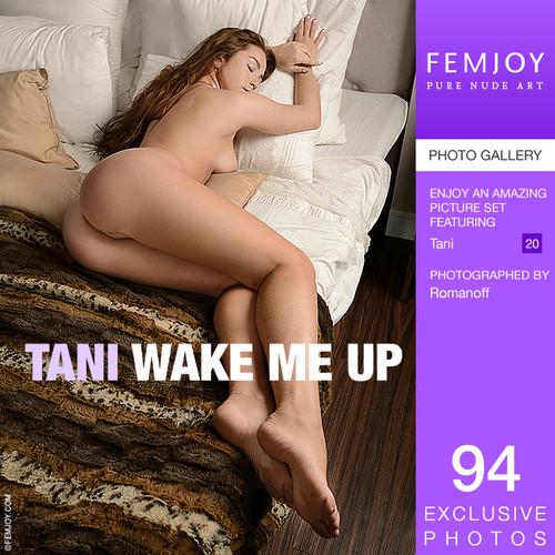 Tani - Wake me up (x94)