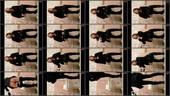 hmhnl6i6tgg2 - v81 - 60 videos