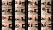 m0tzsqezy1dx - v81 - 60 videos