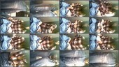 z0m59rximdz0 - v81 - 60 videos